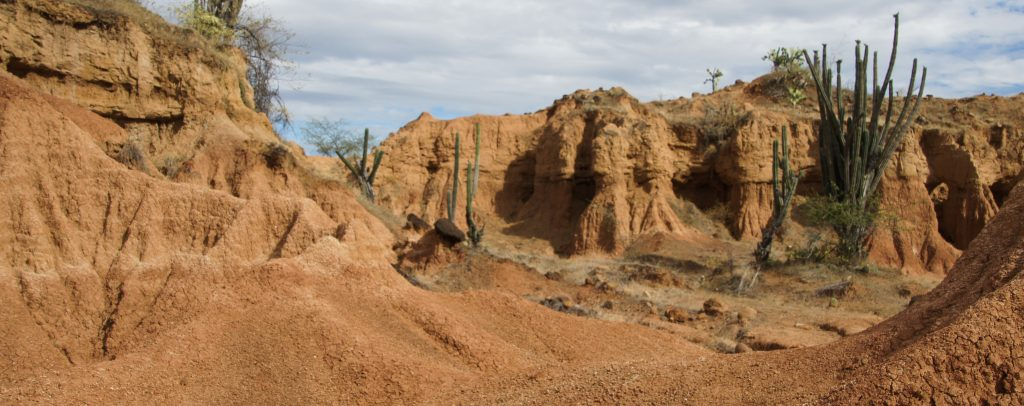 one day to visit tatacoa desert a tour in the red desert