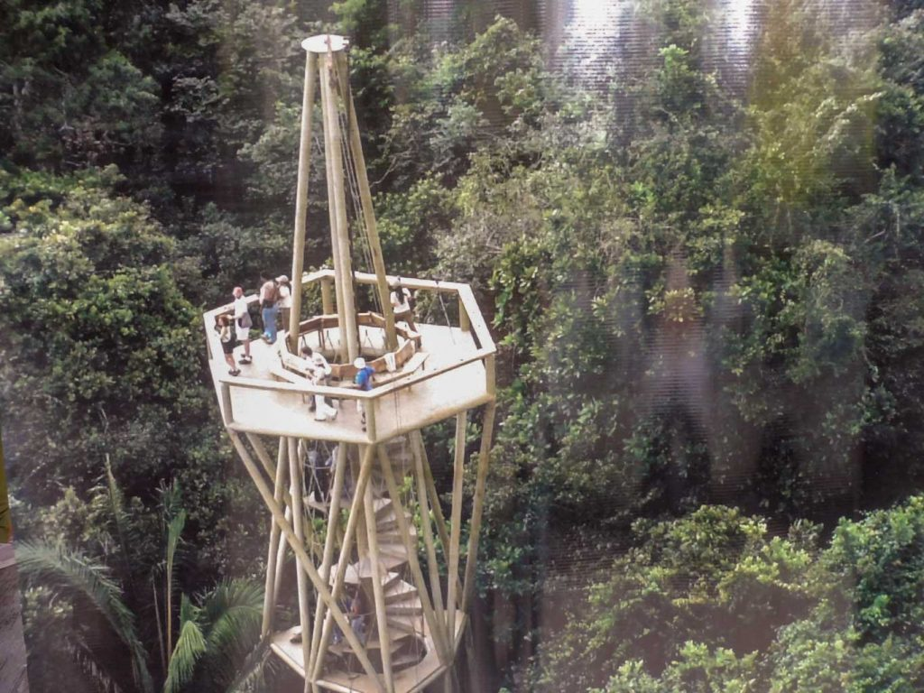 The bird observation tower in rainforest near panama canal