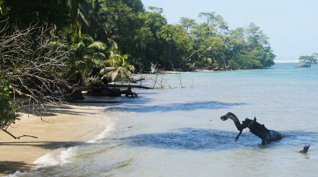 RED FROG BEACH BOCAS DEL TORO BEST BEACHES IN PANAMA
