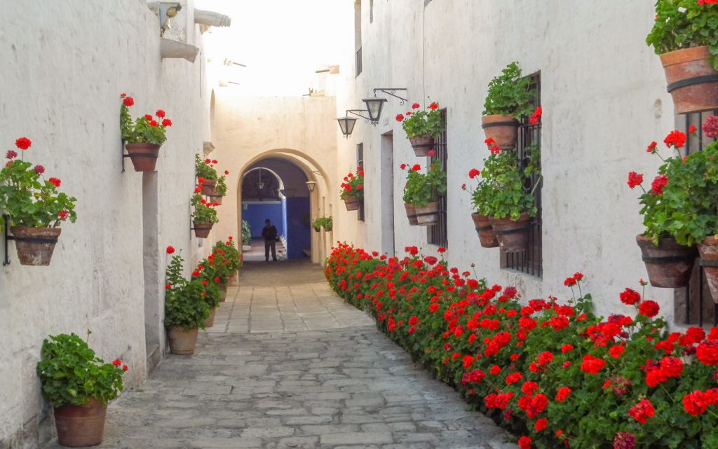 Monastery Santa Catalina in Arequipa in 1 day