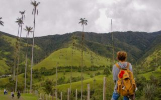 The Cocora valley in coffee region in Colombia