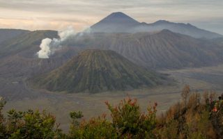 Ascent of Bromo Volcano and how to go from Bromo ti Ijen Banyuwangi