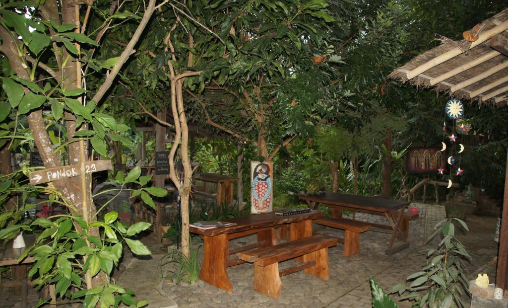 Ascent of Bromo Volcano and cheap hotel in Banyuwangi