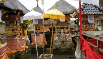 Ubud in 1 day - program of our day visit