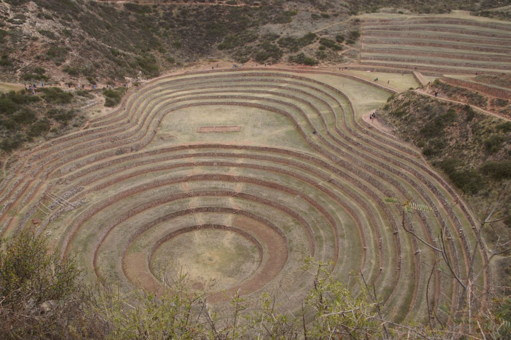 moray on my sacred valley tour
