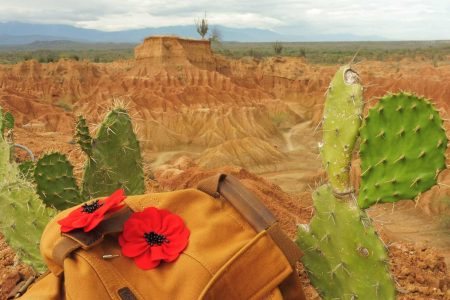 How to visit Tatacoa Desert in 1 day this is my tatacoa tour