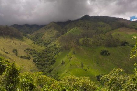 How to go from tatacoa desert to the coffee area in Colombia beautiful landscape