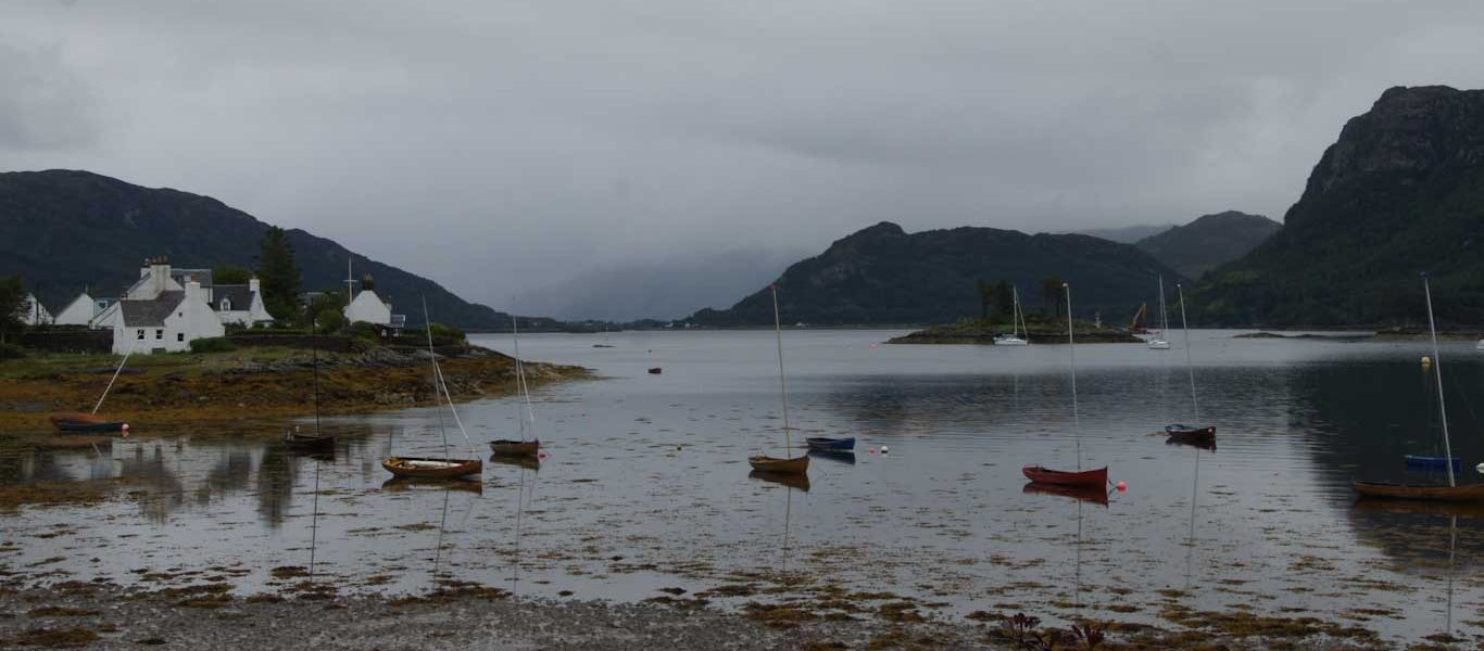 My favorite of my 2 weeks tour in Scotland Scottish seals in Plockton
