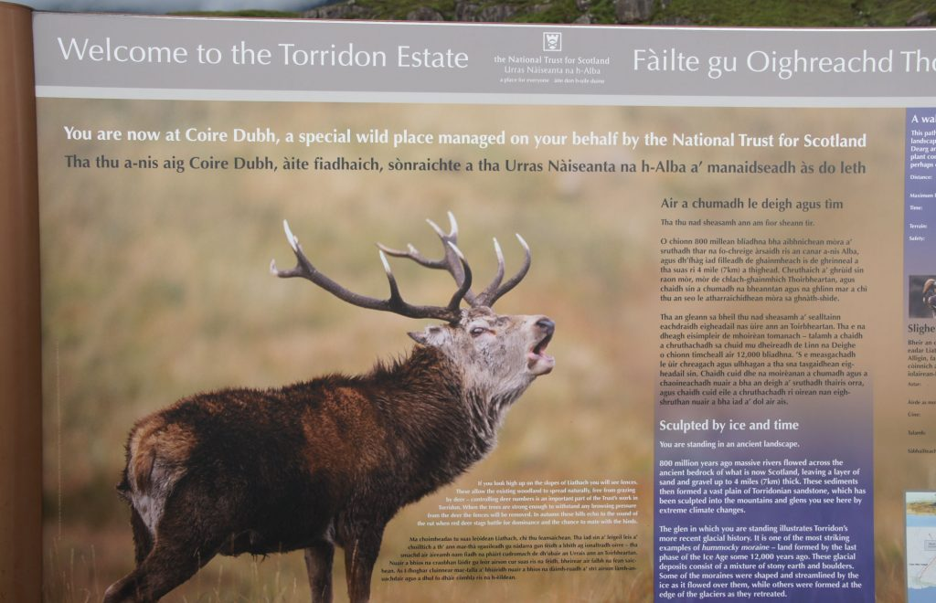 itinerary in Torridon to the Beinn Eighe reserve