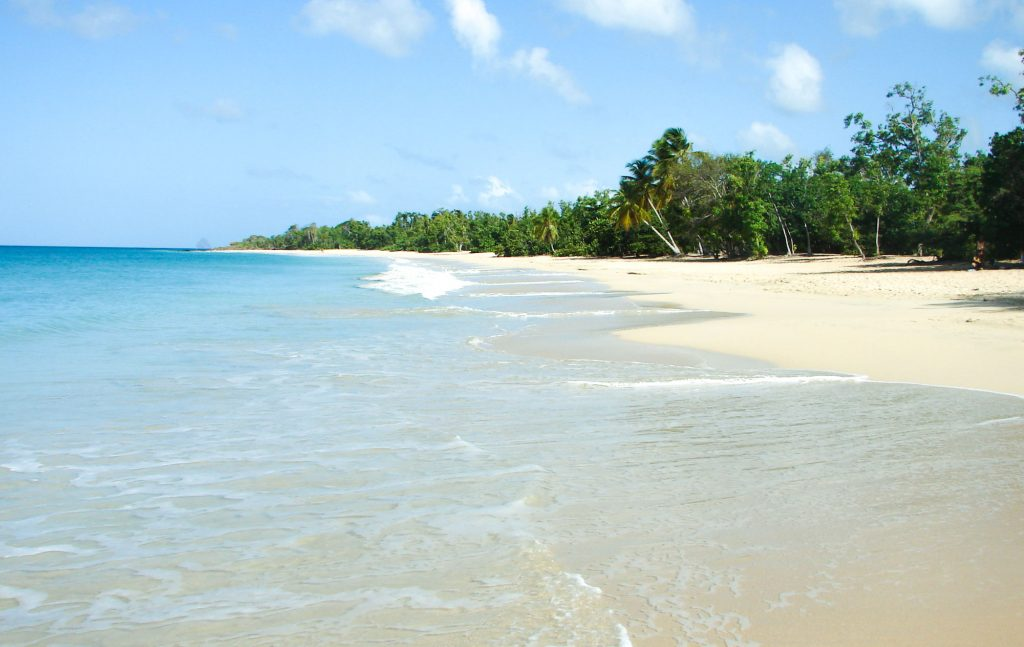 how to chose between Martinique or Guadeloupe ? Where are the most beautiful beaches in Martinique