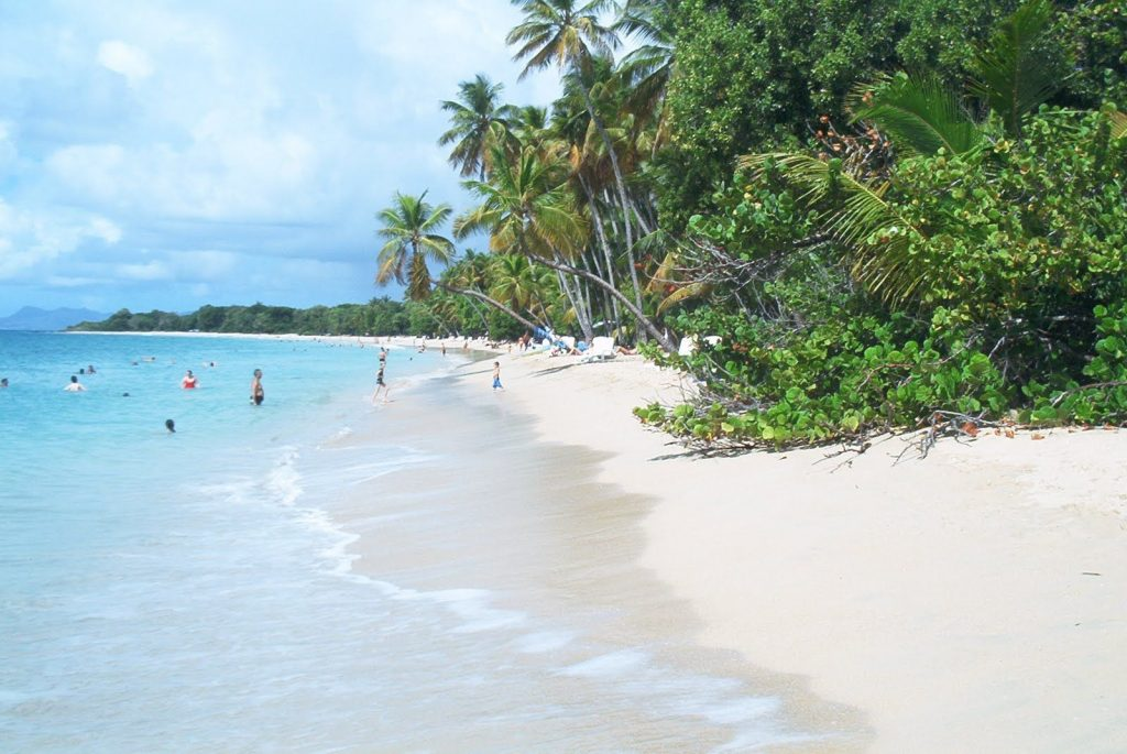 One of the Best beaches in Martinique